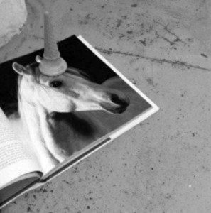dans poétiquement correct ! licorne-3-297x300